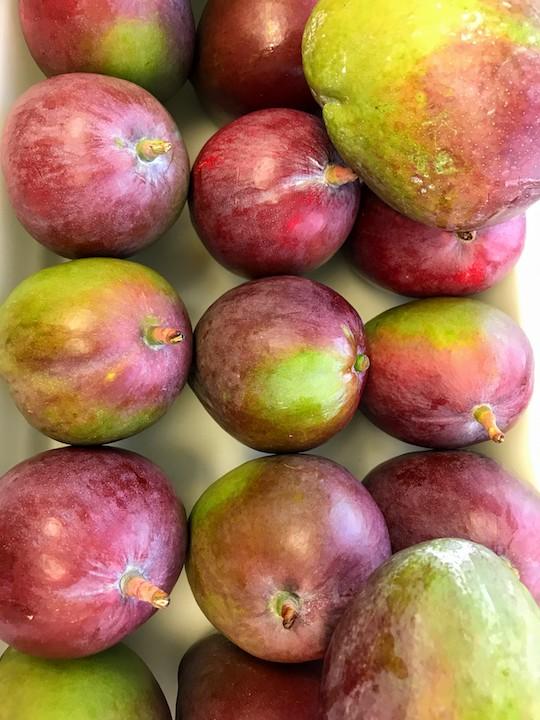 Frutos exportados