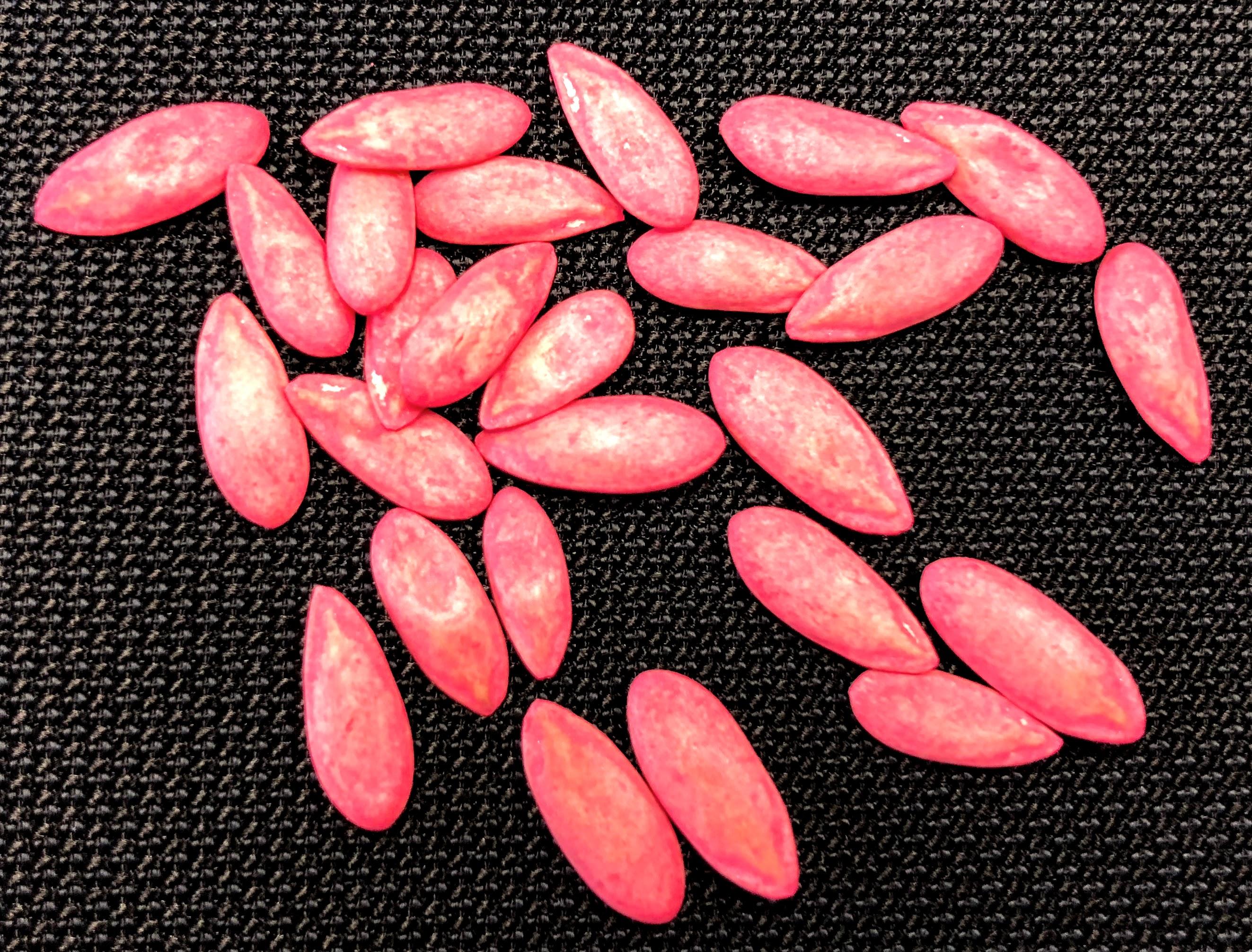 Interceptação de Cucumber green mottle mosaic virus (CGMMV) em sementes de melão da Espanha